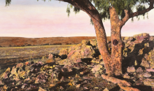Image: Nici Cumpston, Leopard Tree II, 2011, Image courtesy the artist.