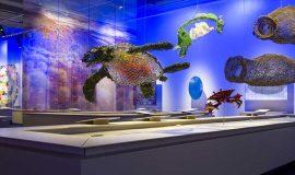View of Lignes de vie @ Musées de la civilisation, Photographe - Jessy Bernier - Icône