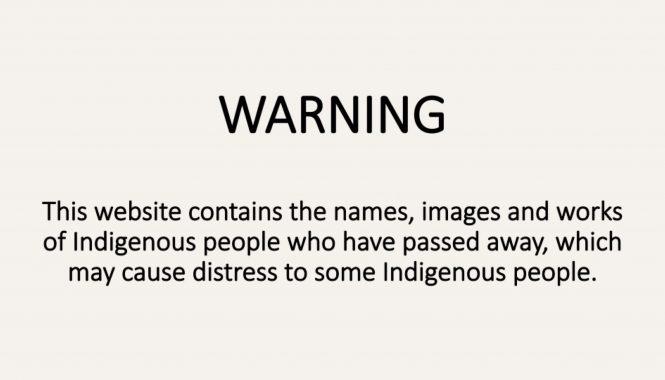 Warning Website 2